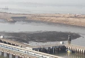 Maharashtra fishermen claim 800 hectare of wetlands destroyed in Uran