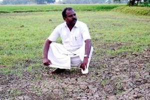Tamil Nadu farmer NC Kannan says he has been incurring losses of over Rs 1 lakh for the past six years due to Karnataka not releasing Cauvery water.