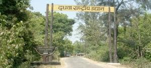 Chief minister Yogi Adityanath to inaugurate international bird fest...