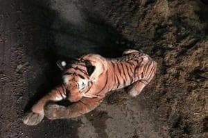 UK police in standoff with tiger, find it's a stuffed toy