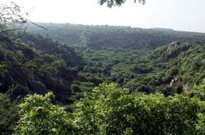 India increased its overall forest cover by 6778 sq km in 2015-17:...