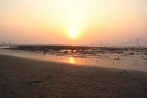 The most eroded coastline in Mumbai is Dadar-Shivaji Park beach.