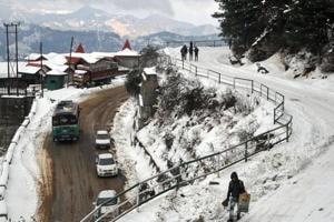 Snow makes Himachal villages prone to leopard attacks; over a dozen...