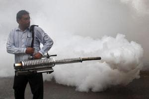Dengue cases on the rise, Rajasthan health department officials in a...