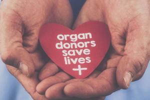 Organ donation at Chandigarh's PGI: Himachal man saves three lives in...