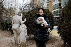 Year of the Dog: Why China's imperial Pekingese canines are so hard to...