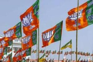 BJP wins Gujarat municipal polls, but tally reduces and Congress gains...