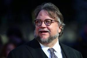 Director Guillermo del Toro: I was in a difficult place for the past...