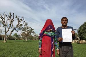 Export boom over, incomes take a dive for farmers in Rajasthan