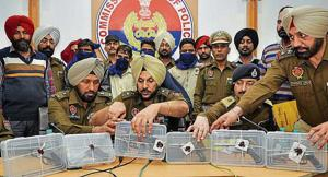 The accused and seized weapons in police custody in Jalandhar on Friday.