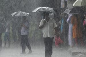 This year's monsoon likely to be normal, says IMD