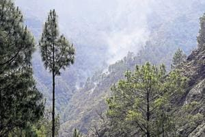 According to official figures, Garhwal reported 68 incidents of fire in which over 31 hectares of land were gutted. In  Kumaon region, 12 incidents of fire damaged 33 hectares of forest land while one incident in Kedarnath Wildlife Sanctuary damaged 5 hectares, officials said.