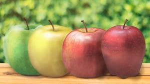 The apples differ in their sweetness (refer to the sweetness meter) and taste but they are all fantastic to eat.