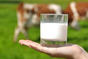 Maharashtra considers life imprisonment for milk adulteration