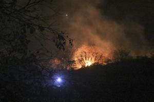 Four fires at Sanjay Gandhi National Park in Mumbai; forest officials...