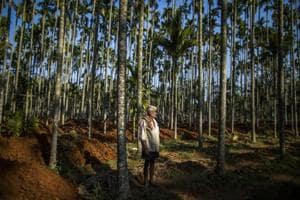 Photos: Rural India inches toward recovery, signs of benefit to...