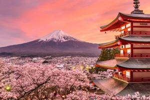 Best time to visit Japan: Spring comes to Tokyo with first cherry...