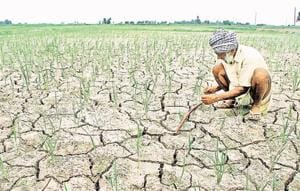 Yogi Adityanath's one year: Waiver cheque failed to check farmers'...