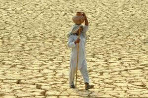 India most vulnerable to climate change among 67 countries: HSBC...