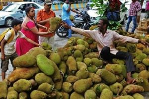 Kerala govt declares jackfruit as official fruit