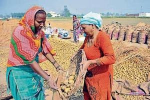 The past few years have witnessed surplus production of potatoes in the state and lack of buyers forced the farmers to dump their crop on roads after a steep crash in prices.