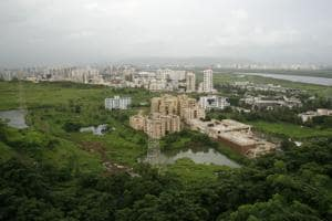 Maharashtra relaxes 50-metre  buffer norm for projects near mangroves