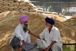 The government plans to assist 7,000 farmers and bring 10,000 acres cultivable area under diversification.