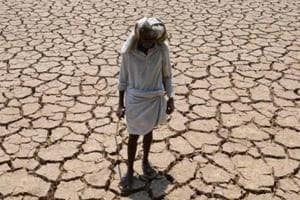"""The report detailed """"45.61% of the farmers who committed suicides were marginal farmers, having less than 2.5 acres of land, whereas 30.53% were small farmers, having land between 2.5 acres and 5 acres""""."""