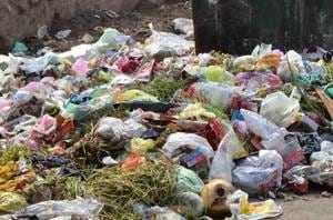 Garbage has not been cleared in Panvel city and various nodes since March 28.