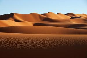 Sahara Desert has grown by 10% since 1920 due to climate change, says...