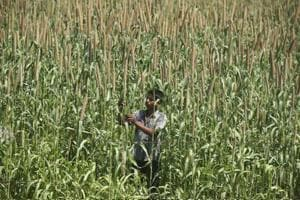 UP's farm loan waiver scheme marred by criticism and controversies