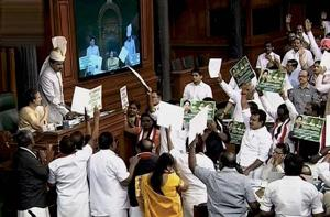 AIADMK members protest in the Well of the Lok Sabha on Thursday.