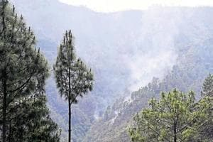 The major details of the policy includes commercial use of forest produce, creating jobs linked to forest conservation, encouraging private plantations, watershed development, and mitigating climate change impacts through forestry.