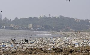 Versova beach before the launch clean-up drive by Afroz Shah.