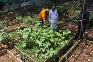Monks in Thane generate power from biogas