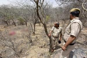 Three bodies with throats slit found in Aravalli forest near Gurgaon