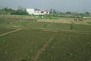 A landowner alleged illegal construction on his land in village Haibatpur of Greater Noida.