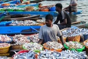 Fish sold in Mumbai markets may make you resistant to antibiotics