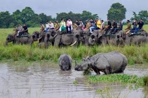 The Assam government had earlier proposed to engage additional manpower to monitor the animal corridor stretch of NH-37 which passes from Jakhalabandha to Bokakhat along Kaziranga National Park.