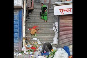Trash strewn on a street at Lower Bazaar in Shimla on Tuesday.