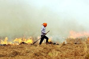 The Punjab government's inaction is particularly glaring, as the NGT order mentions.