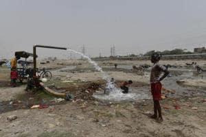 Photos: Landfill proposal on Delhi's Yamuna floodplain raises concerns