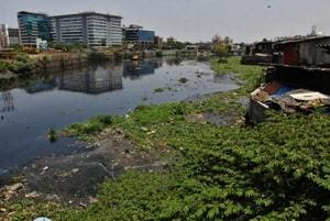Low-lying areas around the Mithi river are prone to flooding every monsoon.