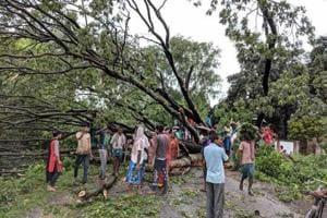 Vast parts of Murshidabad, Birbhum, East Burdwan, West Burdwan, Nadia and Malda districts were affected due to storm and lightning.