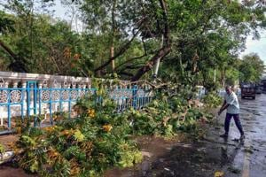 A worker removes uprooted trees from a road after a storm and rain in Kolkata.
