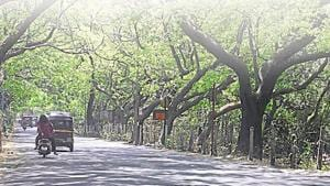 The state government proposed a 30-hectare car shed for Metro III at Aarey Milk Colony area in November 2014