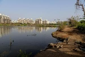 Residents have been fighting to preserve the pristine waters and mangroves at Talawe wetland in Nerul.