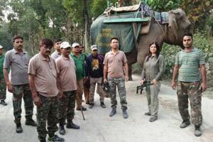 RTR team members deployed for spotting the 'man-eater leopard '.