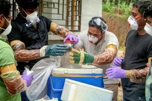Animal Husbandry department and forest officials collect bats from a well of a house after the outbreak of