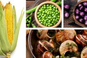 Lectins, found majorly in green peas, aubergines and escargots, play a role in reducing the glycaemic effects of food.
